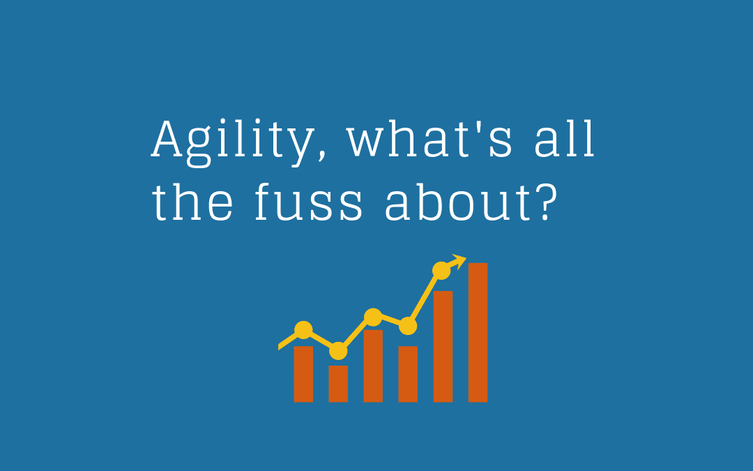 Agility – What's all the fuss about?